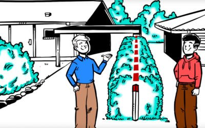 Vinter hits: Flere og flere vælger animationsfilm i de kolde måneder