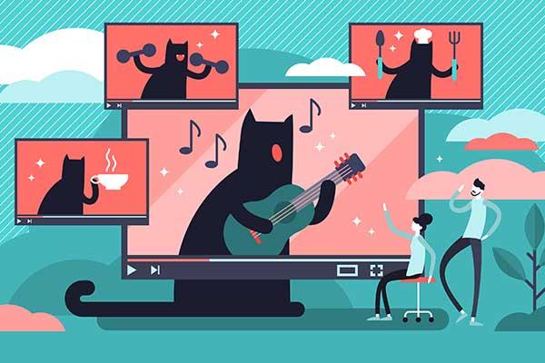 Film til sociale medier – er det investeringen værd? 3